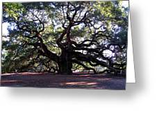 Angel Oak II Greeting Card
