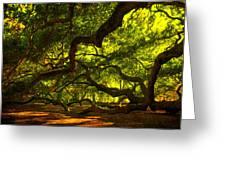 Angel Oak Limbs 2 Greeting Card by Susanne Van Hulst