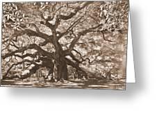 Angel Oak Sepia Greeting Card