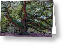 Angel Oak Tree Deeply Rooted History Greeting Card