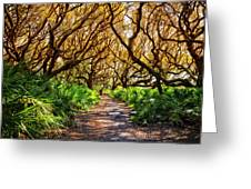 Angel Oaks In Sunshine Greeting Card