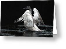 Angel Wings 2 Greeting Card