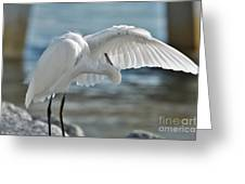 Angel Wings Greeting Card