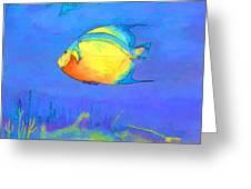 Angelfish Greeting Card