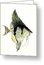 Angelfish Greeting Card