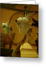 Angelfish Reflections Greeting Card