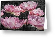 Angelique Peony Tulips Greeting Card