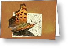 Anglewing Butterfly Greeting Card