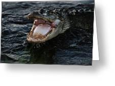 Angry Gator Greeting Card