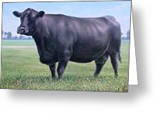 Angus Cow 981 2007 Greeting Card