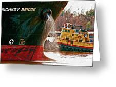 Anichkov Bridge Greeting Card