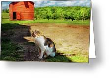 Animal - Cat - The Mouser Greeting Card