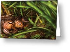 Animal - Wild - Cute Little Chipmunk  Greeting Card