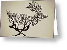 Animal Drawing Greeting Card