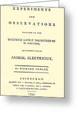 Animal Electricity, Title Page Greeting Card