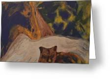 Animals -039 Greeting Card