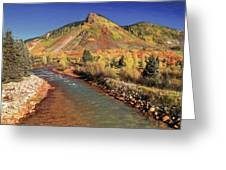 Animas River In Silverton Greeting Card