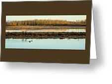 Ankeny Reflections Greeting Card