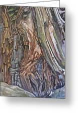 Ankor Temple Trees  Greeting Card