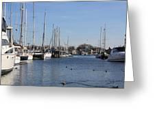 Annapolis - Harbor View Greeting Card