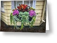 Annapolis Flower Box Greeting Card