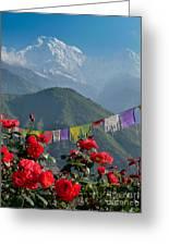 Annapurnas And Prayer Flags Greeting Card
