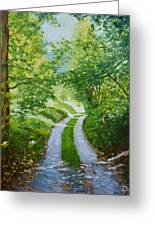Annecy Forest Afternoon Greeting Card