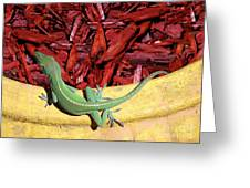 Anole Getting A Better Look Greeting Card
