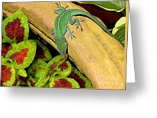 Anole Having A Drink Greeting Card