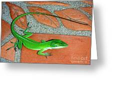 Anole On Chair Tiles Greeting Card