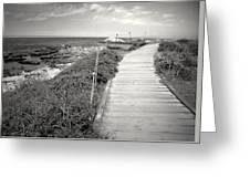 Another Asilomar Beach Boardwalk Black And White Greeting Card