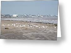 Another Day At The Beach Greeting Card