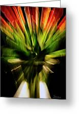 Another Tulip Explosion Greeting Card