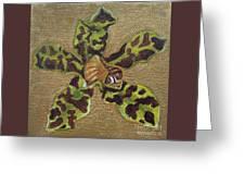 Ansellia Species Greeting Card