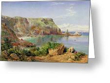 Ansty's Cove Greeting Card