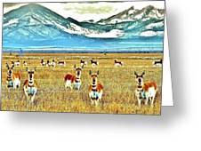 Antelope At Attention Greeting Card