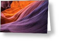 Antelope Rainbow Color Wave  Greeting Card