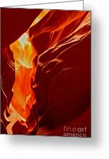 Antelope Textures And Flames Greeting Card