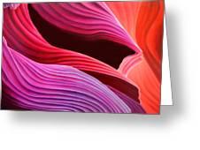 Antelope Waves Greeting Card