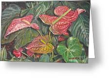 Anthurium Greeting Card