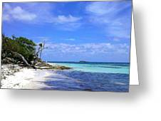 Antigua Beach Greeting Card