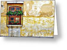 Antigua Window Greeting Card