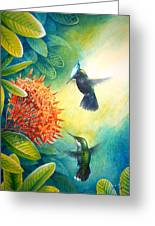 Antillean Crested Hummingbirds And Ixora Greeting Card