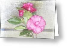 Antique Camellias Square Greeting Card