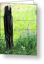 Antique Fence Post Greeting Card