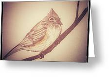 Antique Titmouse Greeting Card by Ginny Youngblood