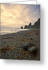 Anxiety Morning On The Ocean Shore. Greeting Card