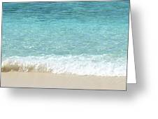 Anyone For A Swim Greeting Card