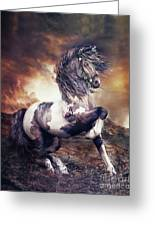 Apache War Horse Greeting Card