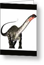 Apatosaurus Profile Greeting Card